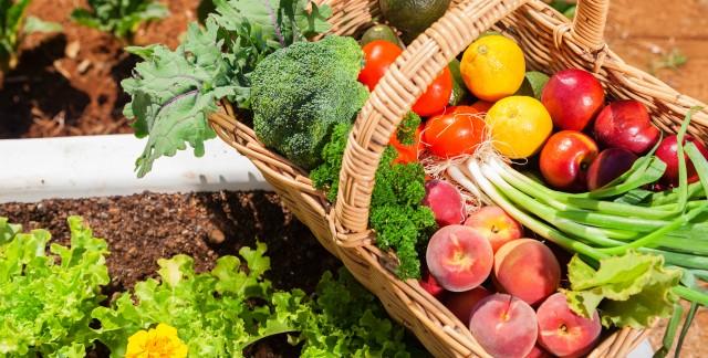 Fruits et légumes primeurs: savoir faire le bon choix