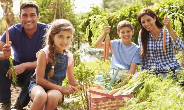 10 légumes à faire pousser dans son jardin