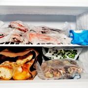 Guide sur les temps de congélation des aliments