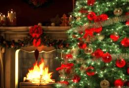 Les solutions de sapins de Noël pour épargner de l'argent