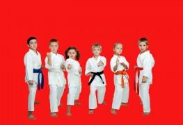 Le meilleur âge pour initierun enfant aux arts martiaux