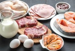 La puissance de la protéine