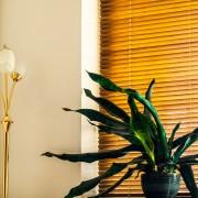 Astuces pour une salle de séjour plus écologique