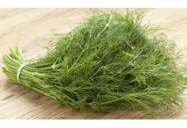 Infos utiles à connaitre sur l'aneth, une plante médicinale et aromatique