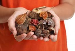 5 façons savoureuses de manger plus de graines et denoix