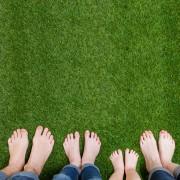 Comment donner du tonus à votre pelouse
