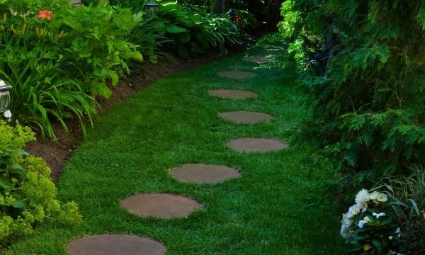 Faire un jardin: la plantation dans un sol humide