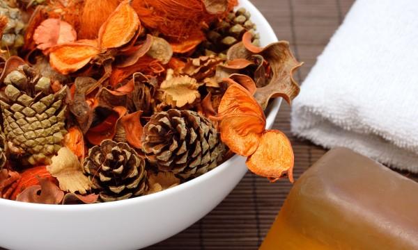 7 façons économiques de se débarrasser des mauvaises odeurs