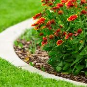 Trucs infaillibles pour préparer le terrain en vue du jardinage