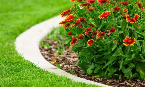 Quelques conseils pour l 39 entretien des bordures de votre - Bordure de jardin special tondeuse ...