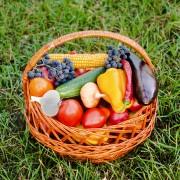 5 conseils pour bien manger bio