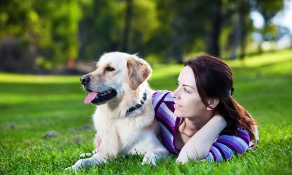 5 astuces que chaque propriétaire de chien devrait connaître