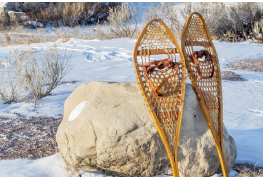 5 choses à savoir pour commencer à pratiquer la raquette cet hiver