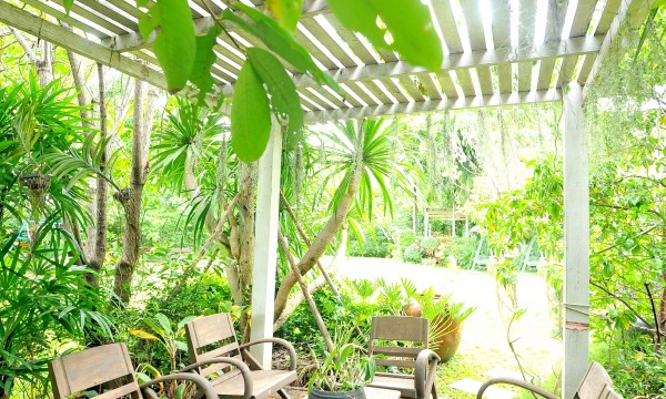 5 façons de transformer votre terrasse en une oasis privée