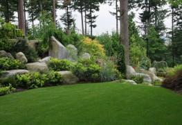 Comment choisir l'engrais qui ravivera votre pelouse
