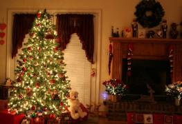 Sapin de Noël naturel ou artificiel? Avantages et désavantages