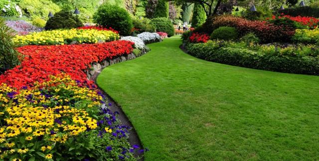 3 bons conseils un avoir un jardin florissant