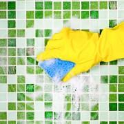 La méthodeverte pour nettoyer vos toilettes