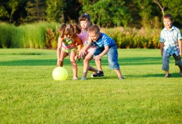 7 conseils pour tondre votre pelouse comme un pro