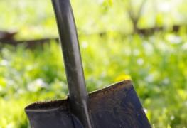 7 conseils de base au désherbage de votre jardin