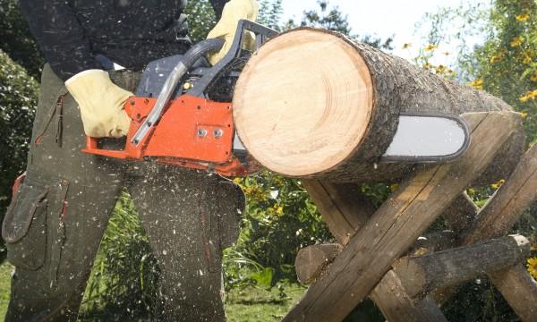 Couper une buche en planche cadeaux de no l populaires - Couper bois avec meuleuse ...