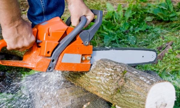 Choisir les bons outils de coupe et les scies de base