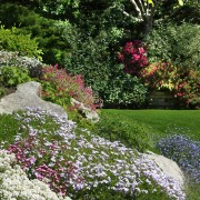 Création et rafraîchissement d'un jardin de rocaille