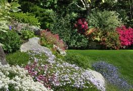 Comment créer un jardin de rocaille | Trucs pratiques
