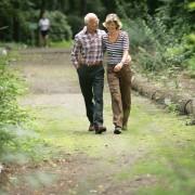 9 conseils pour encourager les habitudes de marche