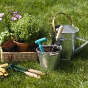 Conseils pratiques pour l'entretien de vos outils de jardinage