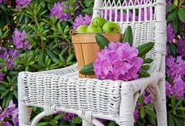 Le jardinage vert: cultiver les rhododendrons et azalées