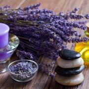 Les bienfaits de la médecine alternative