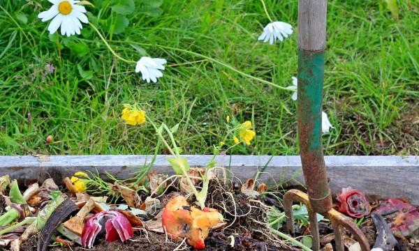 Choses  Savoir Avant DInstaller Un Bac  Compost Dans Votre