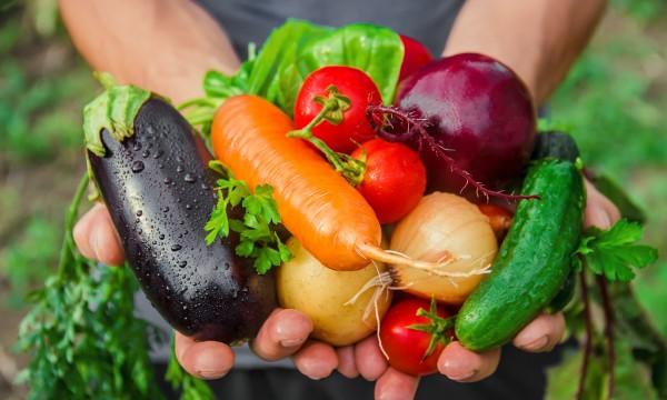 10 légumes à faire pousser facilement dans votre potager