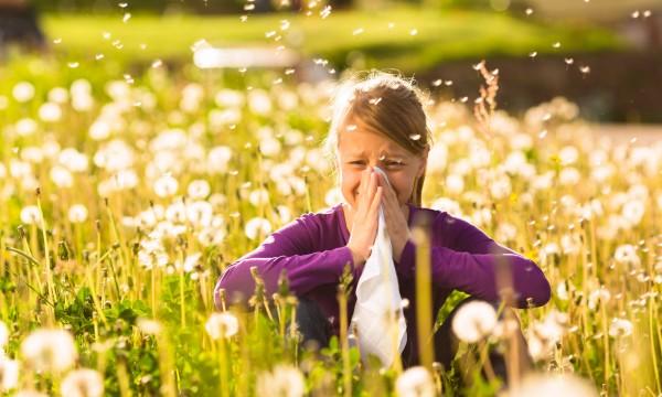 3 moyens efficaces de soulager les symptômes d'allergies