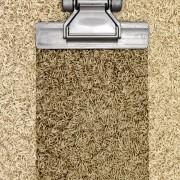 3 étapes importantes pour réparer la moquette mouillée