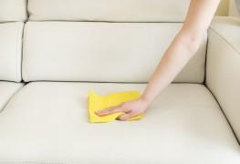 Conseils simples pour prendre soin du mobilieren cuir