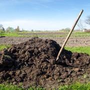 5 conseils pour faire votre propre compost