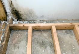 Que faire quand votre sous-sol est humide