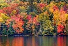Où voir les plus beaux feuillages d'automne au Canada
