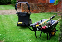 Bases de jardinage: de quels outils manuelsavez-vous besoin?