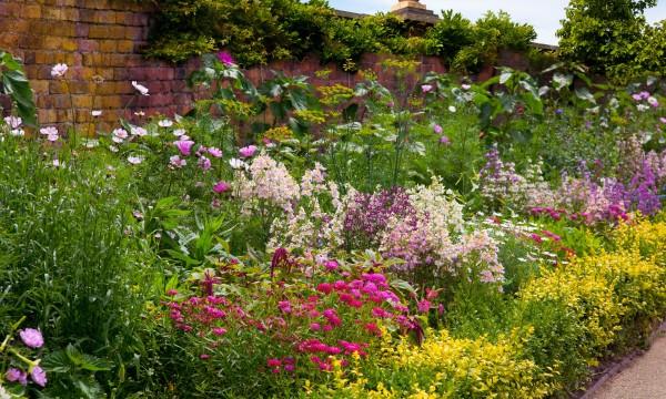 Commentconcevoiret planter une plate-bande herbacée