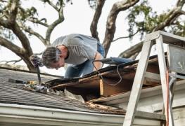 Comment faire pour supprimer la moisissure de votre toit