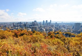 25 façons de combattre la grisaille de novembre à Montréal