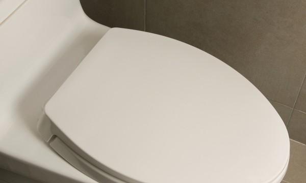 petit guide pour l installation d une nouvelle toilette trucs pratiques. Black Bedroom Furniture Sets. Home Design Ideas