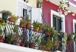 11 idées pour vos terrasses, patios et jardins de la véranda