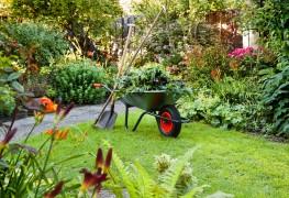 4 facteurs àprendre en comptepourpréparer le parfait site de jardin