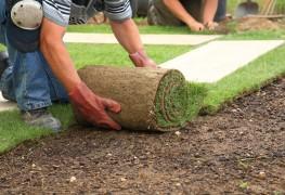 11 questions importantes à poser lorsque vous appelez un paysagiste ou un concepteur-paysagiste