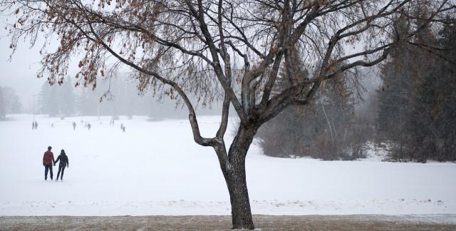 Chaussez vos patins à ces patinoires d'Edmonton