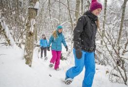 Courage! 5 manières de combattre le blues hivernal